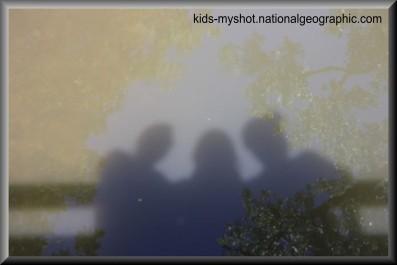 Shadow 3