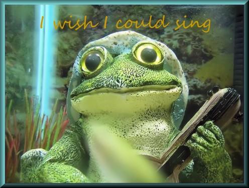 sing-1